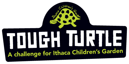 Tough Turtle Ithaca