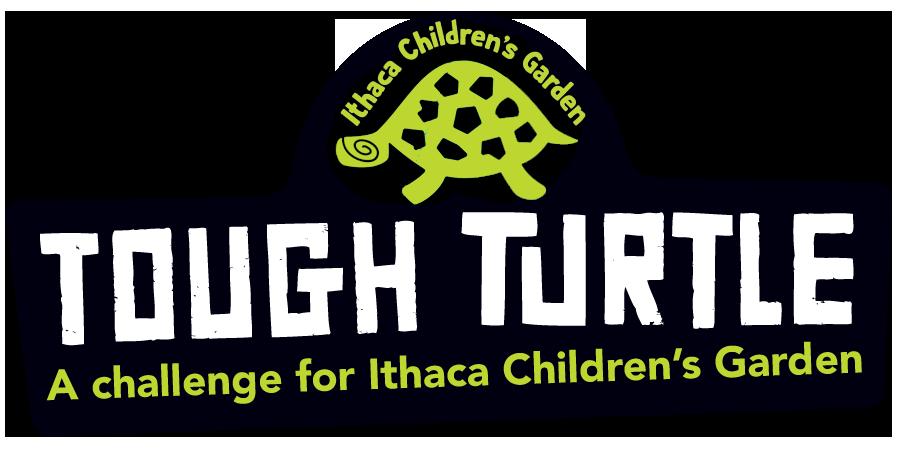 Tough Turtle Ithaca